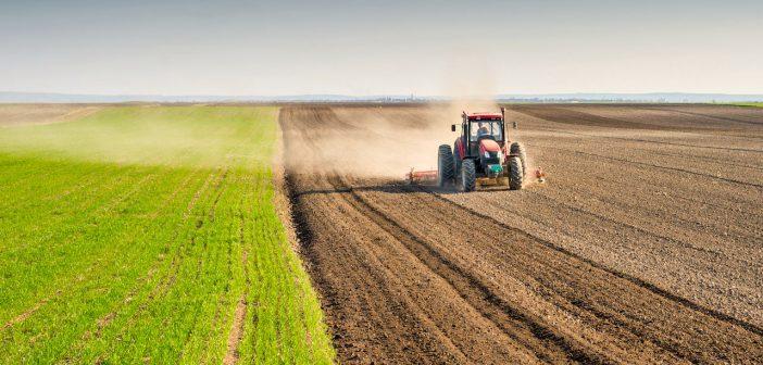 | 18, 19, 20, 25, 26, 27 MAGGIO 2018 | ORIOLO ROMANO – AgriOriolo, pronti per una full immersion nella vita di campagna?