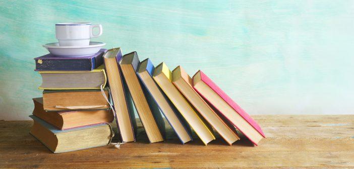 | dal 23 al 26 MAGGIO 2019 | RONCIGLIONE – Al via un Borgo di Libri la fiera dell'editoria!