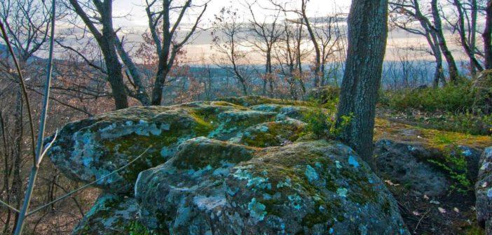   4 OTTOBRE 2020   BAGNAIA – Escursione nel bosco esoterico di colle Montecchio