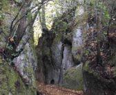   #PERCORSIDELLATUSCIA   Le vie del tufo: Anello delle Vie Cave, forre e necropoli rupestri – BLERA